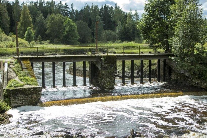 Paisud Eesti jõgedel: tüli rohkem kui kasu