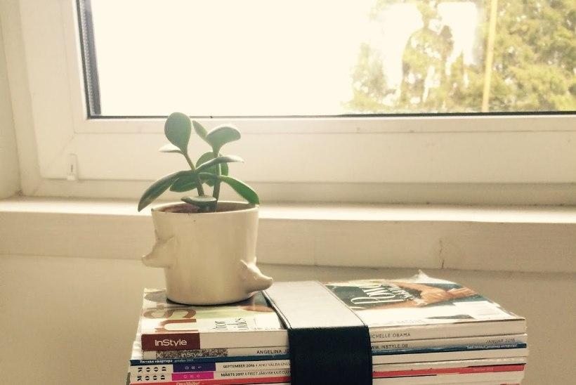 Tee ise: ajakirjadest pink