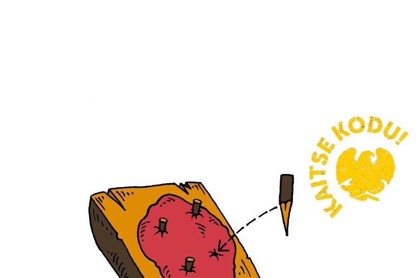 METSAGURMEE: Kolm lihtsat nippi, kuidas metsas liha valmistada