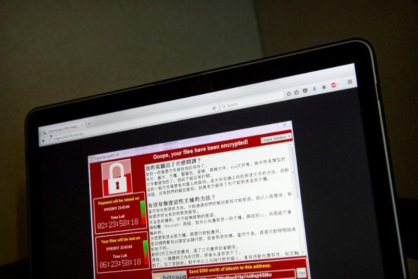 Soomlaste uus hobi: küberturvalisuse kursused