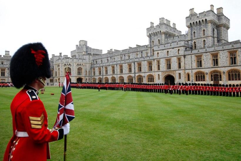 VIDEO | Elizabeth II lossivalvur kärkis turisti peale