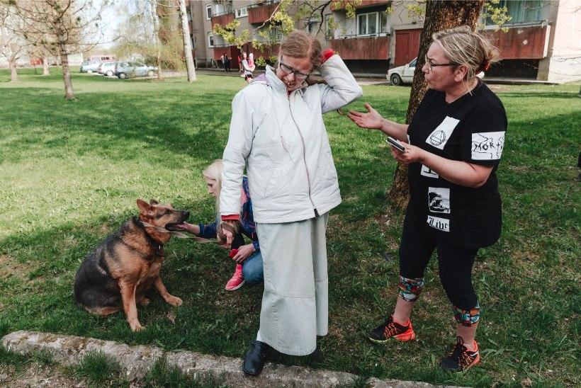 ÕHTULEHE VIDEO JA FOTOD | Loomasõbrad päästsid tänaval lohistatud koera perenaise käest