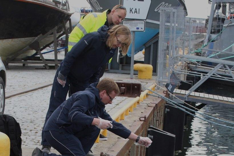 Tallinna lahest leitud naftareostuse koostis tehti kindlaks