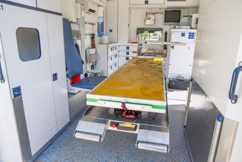 Eesti veterinaaria uus tase – loomakliinik, mis tuleb ratastel koduukseni