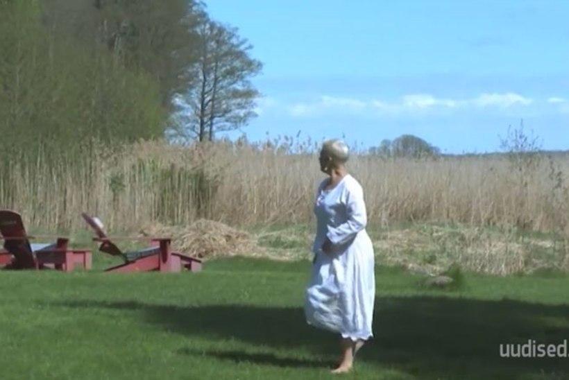 TV3 VIDEO   Uus mekimagnet? Evelin Ilves hakkab Hiiumaal restorani pidama