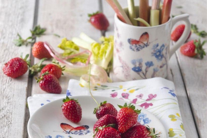 Suvised road rabarberi ja maasikaga