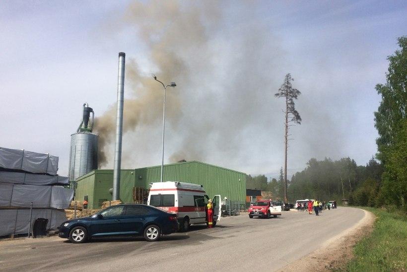 Viljandimaal süttis tehases saepurupunker