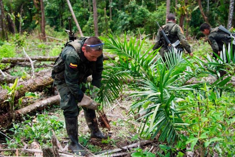Inimrööv Colombias: ÜRO ametnik on mässuliste käes vangis