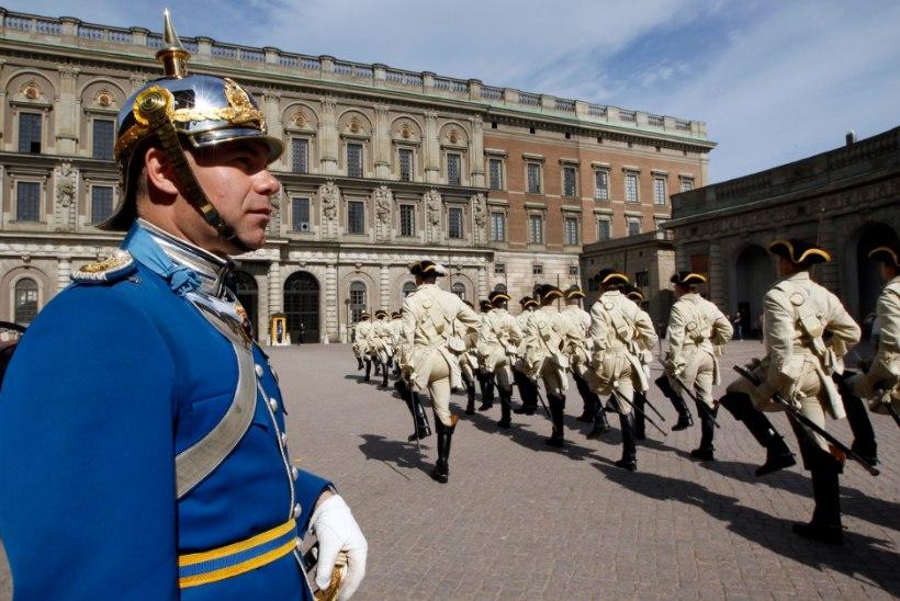 Rootsi kuninglikud valvurid on pisikeste lindudega kimpus