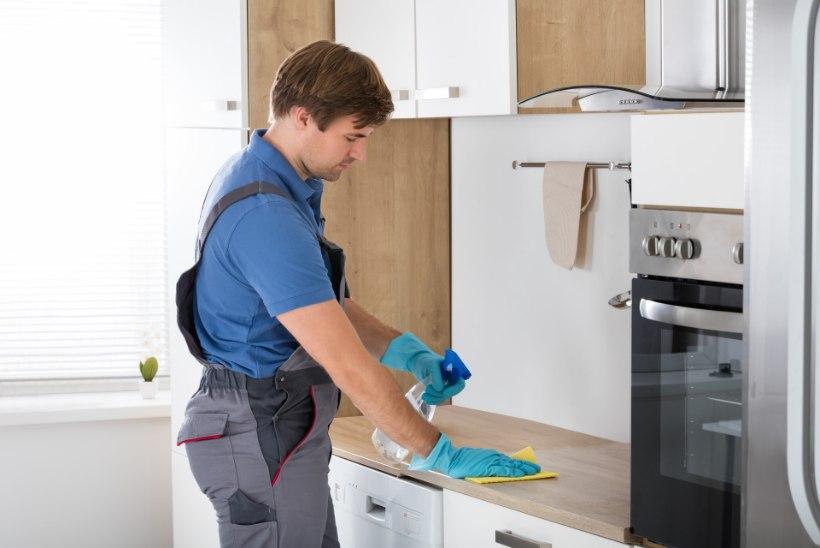 PUHTUS MAJJA: kõige mustemad kohad sinu köögis
