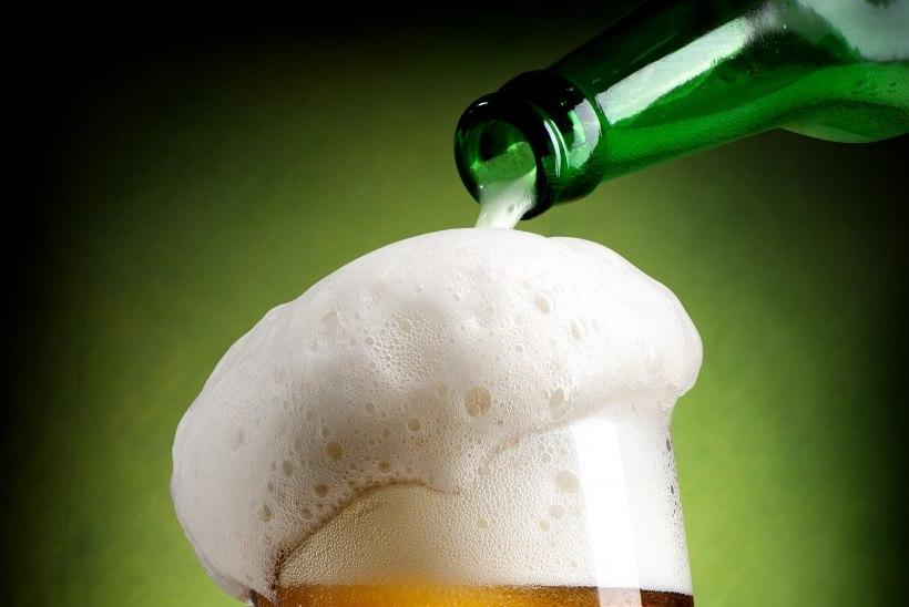 Kuidas puhastada õlleplekke