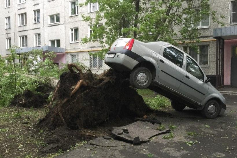 VENE AKADEEMIK: Moskvat räsinud torm on märk lähenevast jääajast