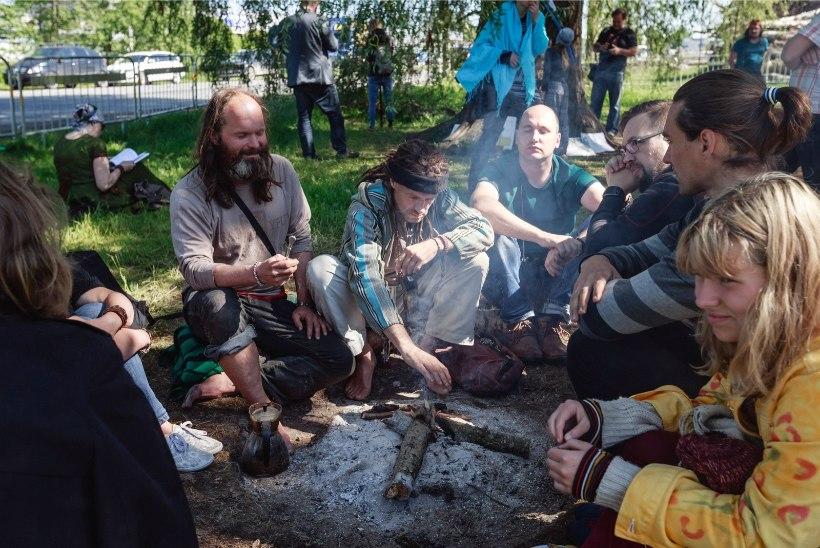 GALERII JA VIDEO   Puukaitsjad pidasid Haabersti hõbepaju all lõkkehommikut ja rääkisid looduse väest