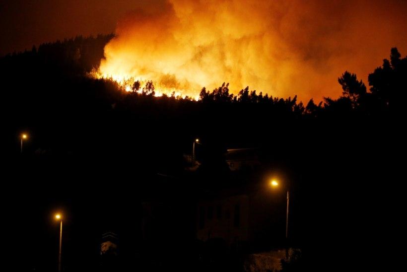 VIDEO | Portugali ulatuslikud metsapõlengud on võtnud juba 57 inimelu