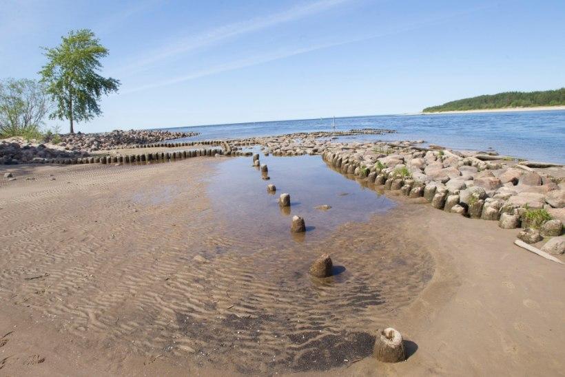 KUULSUS KUTSUB KÜLLA | Üllar Saaremäe soovitab: mida teha Ida-Virumaal?