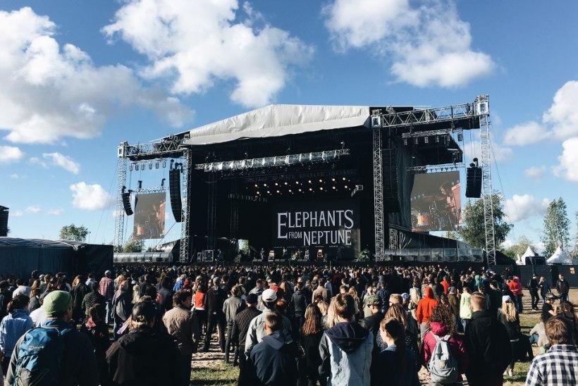 Eesti fännid Foo Fightersi kontserdil: tahtsime oma silmaga Nirvana rokkarit näha!