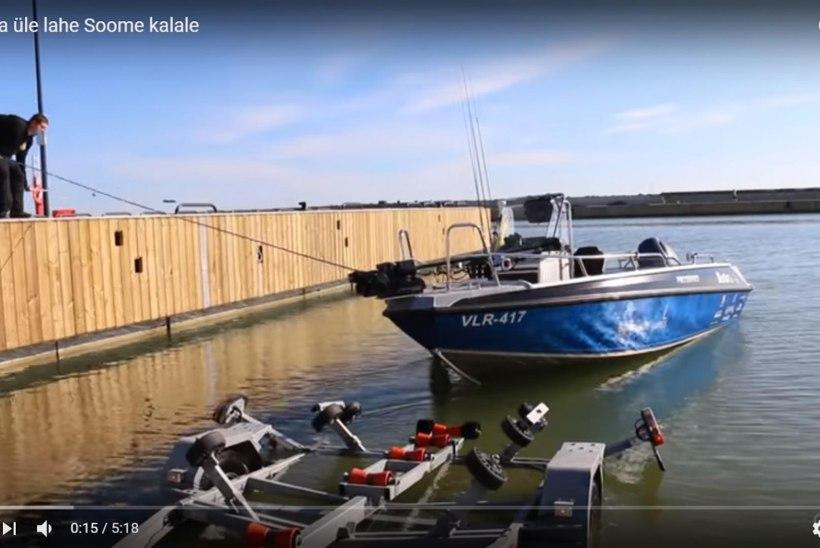 VIDEO: Kaatriga üle lahe kalale