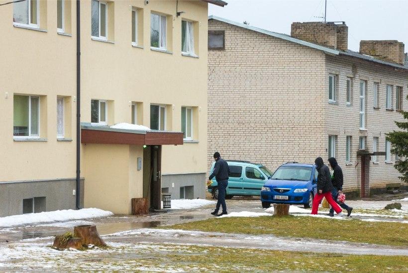 Sisserändajate korterid: röögatud hinnad, närused elamistingimused ja libalepingud