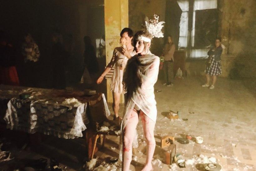 VIDEO | Tuntud performance-kunstnik Al Paldrok Noblessneris: ära tarbi, loo ise!