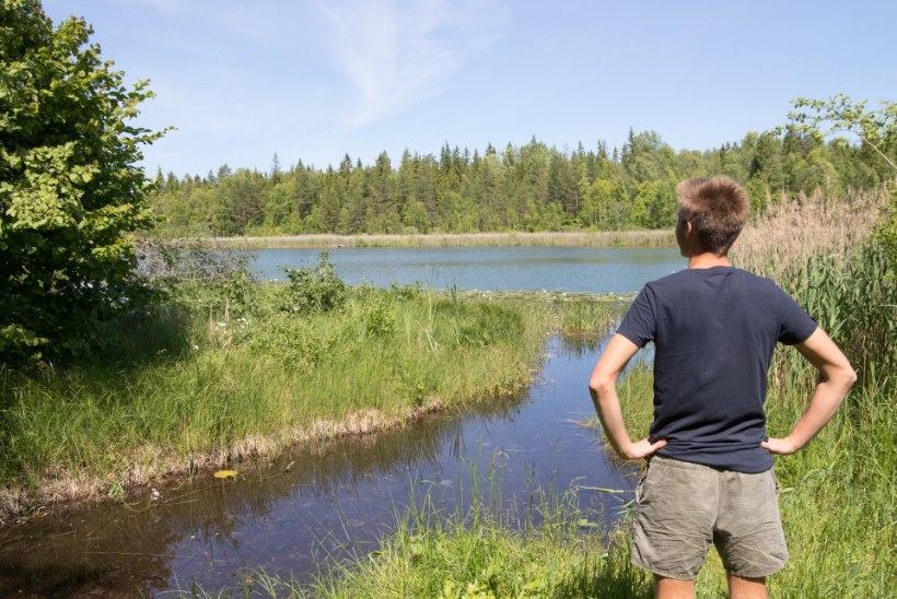 KUULSUS KUTSUB KÜLLA | Indrek Taalmaa soovitab: kuhu minna Viljandimaal?