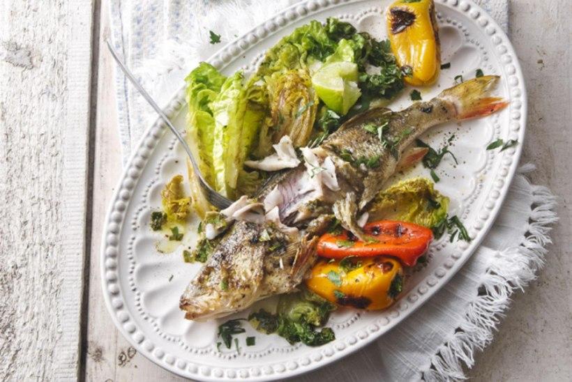 Tervena grillitud kala ja rooma salat