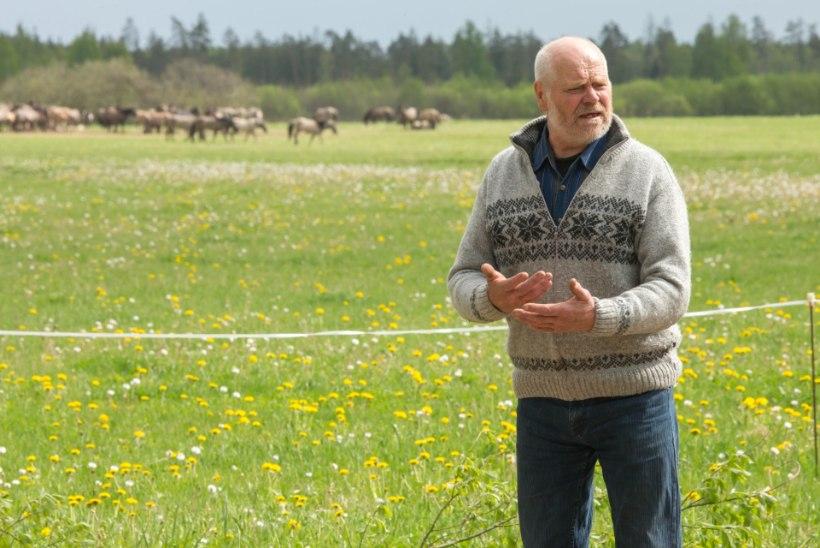 Talumehe  mure: maast jäin ilma, kuhu ma nüüd panen need sada poolmetsikut hobust?