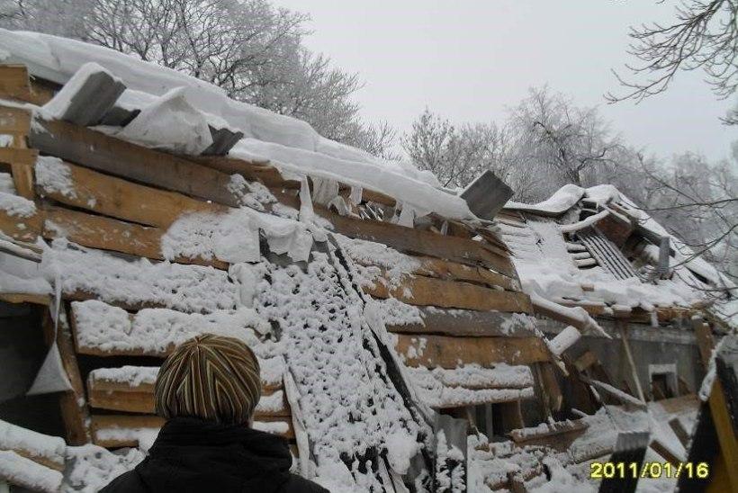 Leppimatud prouad käisid jõuluööl katuseta jäänud maja pärast seitse aastat kohut