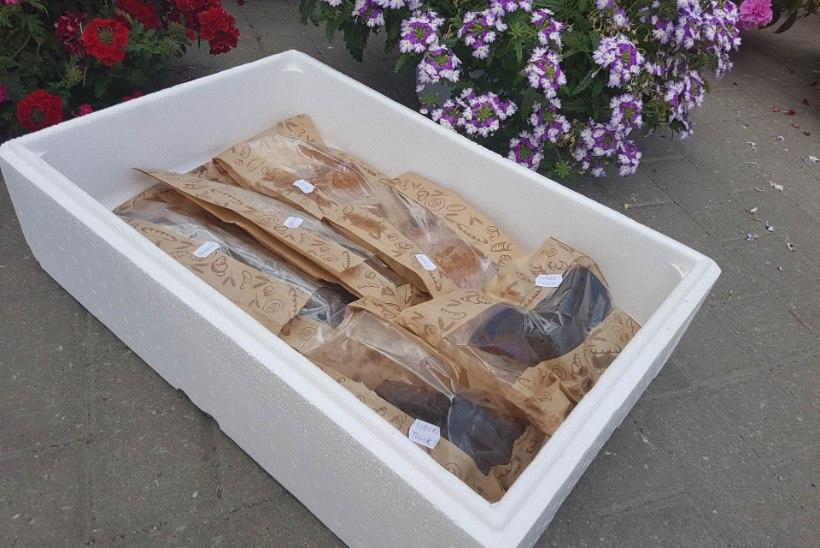 ISUÄRATAV KATSE | Milline suitsukala on kõige parem ja mis neist võiks olla suviste pidude ajal laual?