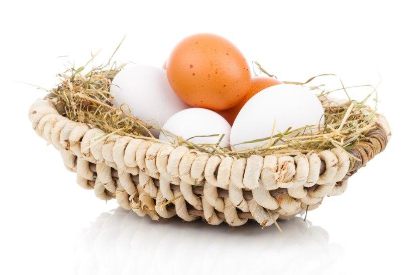 Kas pruuni koorega muna on valge koorega munast tervislikum?