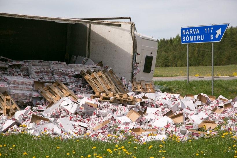Selgus majas: miks läks õlleveok Rakvere külje all kummuli?