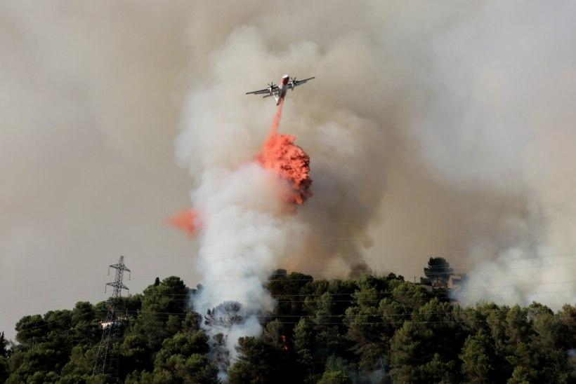 FOTOD | Prantsusmaa lõunaosa laastab ulatuslik metsapõleng