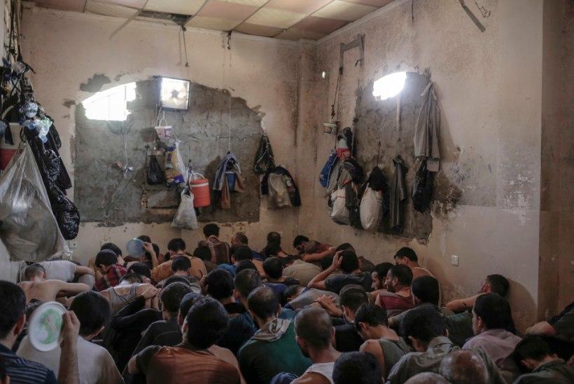 PILTUUDIS   Mosulis vangistatud ISISe võitlejad elavad pead-jalad koos