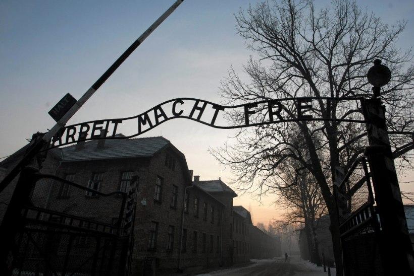 Tudeng käis kunstiprojekti tarbeks Auschwitzis vargil