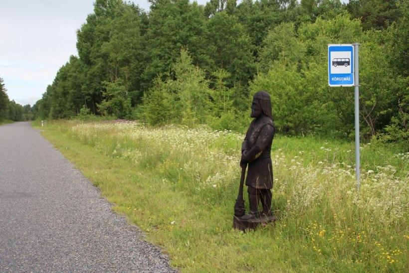 """Pühapäeval """"rändama läinud"""" Varbola linnusevaht leiti täna bussipeatusest"""