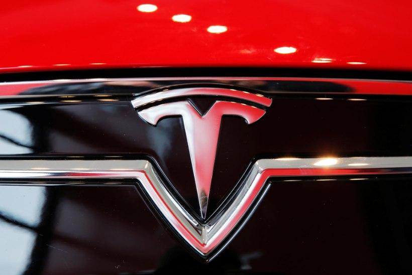 Ohoo! Tesla autoistmed on veganisõbralikud