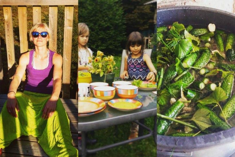 NEED PILDID AJAVAD SUU VETT JOOKSMA | Kuidas maitseb suvi Pajuvärava talus?
