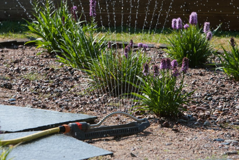 Kastmisnippe algajale aiapidajale