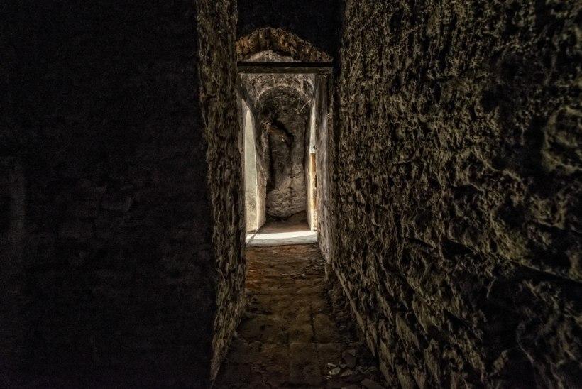 FOTOD | Kirna mõisas on avatud Katrin Valdre ja Sven Saagi fantastiline näitus