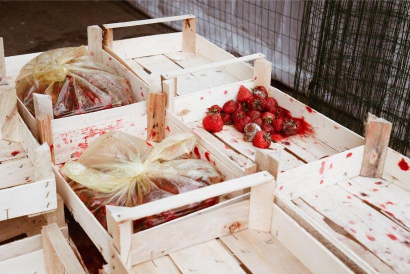 FOTO   Hallitavad maasikad turul