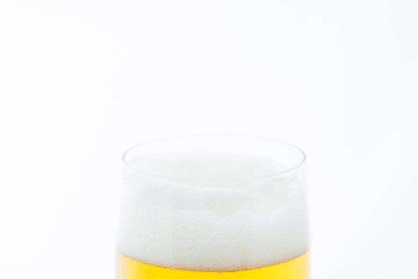 LÕBUS JA KASULIK: teadlased lõid immuunsüsteemi ja seedimist tugevdava õlle