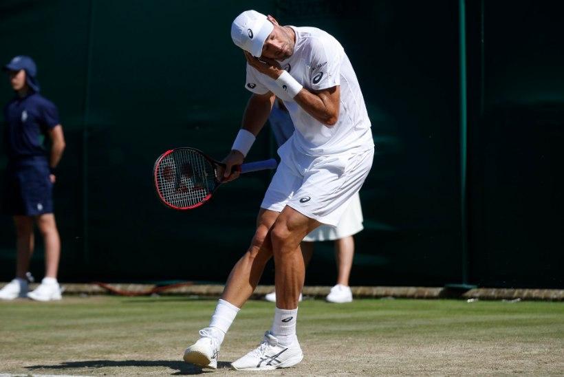 KURI KARJAS! Tüütud olendid ajasid Wimbledoni tennisistide närvid krussi