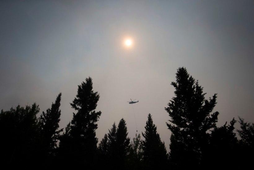 VIDEO | Kanadas on meeletud metsapõlengud, inimesed peavad autoga leekide vahelt läbi sõitma.