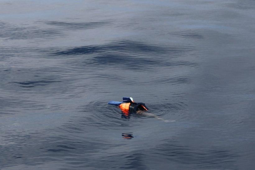 Vahemeres on uppunud 2408 põgenikku