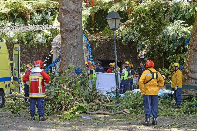 Madeiral tappis langenud puu 11 inimest