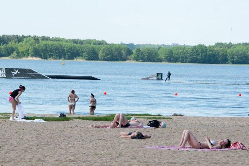 Keskkonnaamet ei lubaHarku järve äärsetel kinnistutel lageraiet