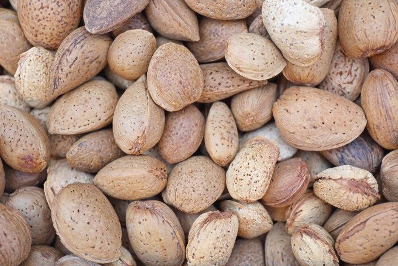 Mandlite söömisest on abi kõrge kolesterooliga võitlemisel