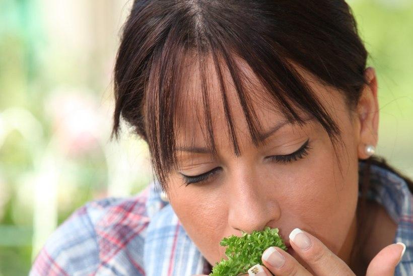 IMETAIM PETERSELL: levinud maitsetaim aitab kolme päevaga viis kilo kergemaks saada!