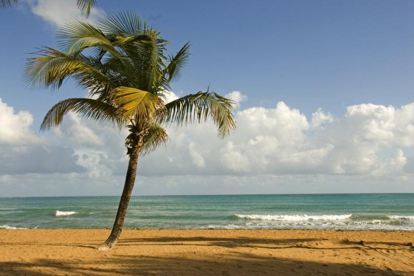 """""""Despacito"""" on rakendatud Puerto Rico turismivankri ette!"""