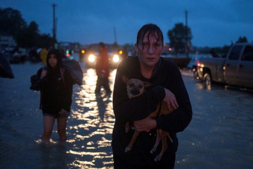 Houstoni tammi tagant pääses vesi valla