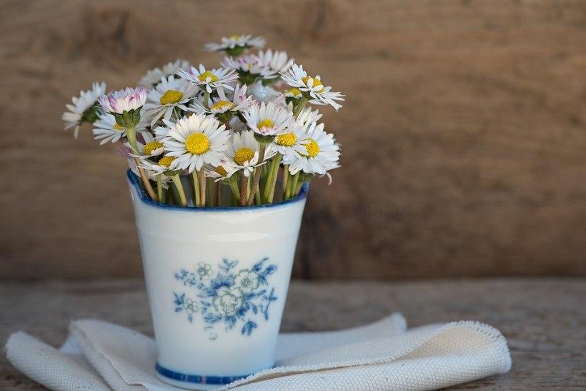 Geniaalne nipp, kuidas lilled vaasis kauem värsked püsivad